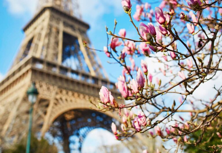 18 Best Places to See Cherry Blossoms in Paris (+ Practical Tips For Seeing Them and a Free Map)