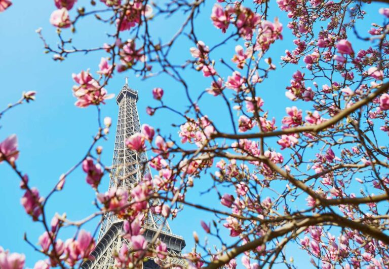 What to Wear in Paris Spring ( And Look Like a Parisian or Atleast Try )