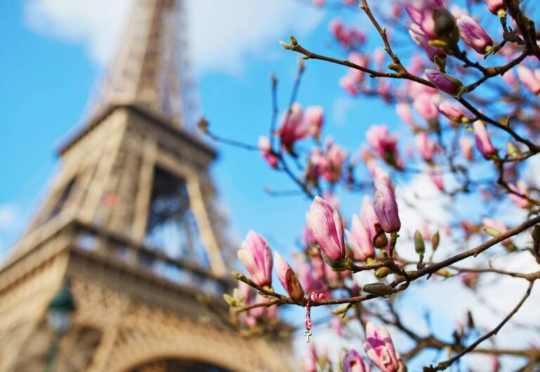 10 Incredible Things to do in Paris in Spring